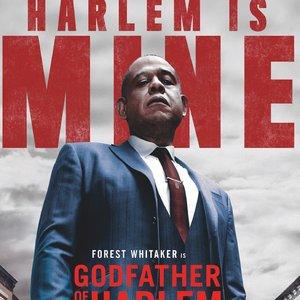 Image for 'Godfather of Harlem'