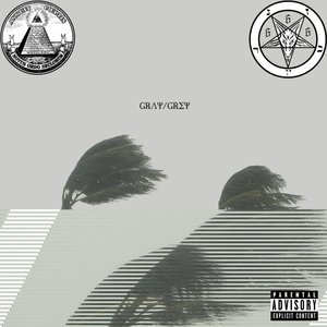 Image pour 'Gray/Grey'