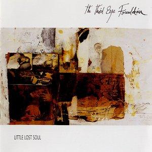 Bild für 'Little Lost Soul'