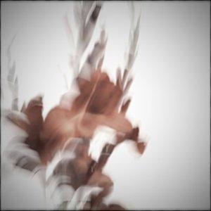 Image for '323 Sayonara Memories'