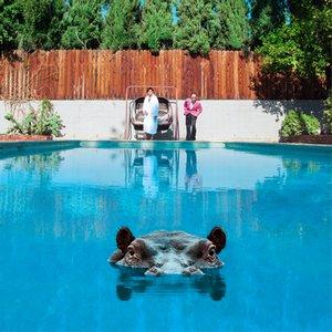 Image for 'Hippopotamus'