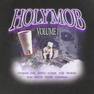 Image for 'Holy Mob, Vol. 1'