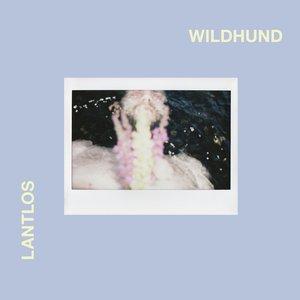 Image for 'Wildhund'