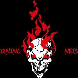 Bild für 'Burning Noise'