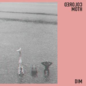 Изображение для 'DIM'