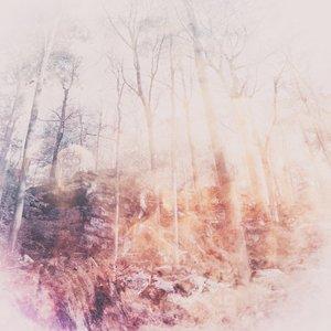 Zdjęcia dla 'Arboretum'