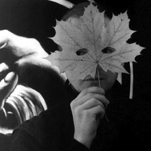 Bild für 'Darkwood'
