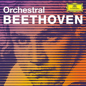 Image for 'Orchestral Beethoven'
