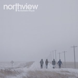 Image for 'northview'