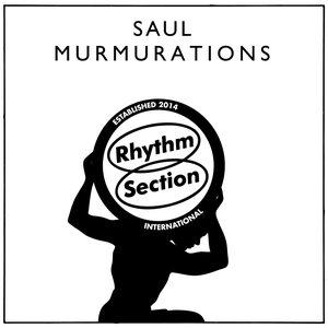 Image for 'Murmurations'