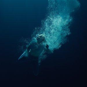 Bild für 'Through Water'