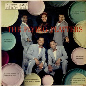 Image for 'The Flying Platters'