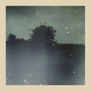 Image for 'Forsvinder'