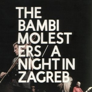 Image for 'A Night In Zagreb'