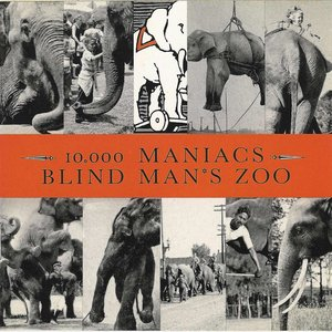 Image for 'Blind Man's Zoo'