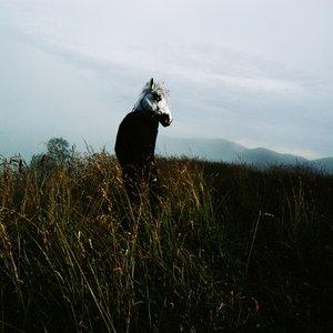 Image for 'Sparklehorse'