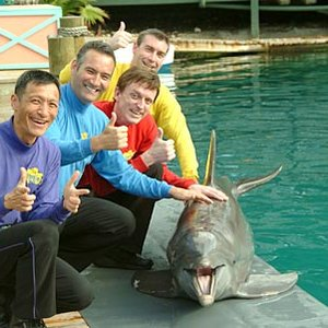 Image for 'The Wiggles'