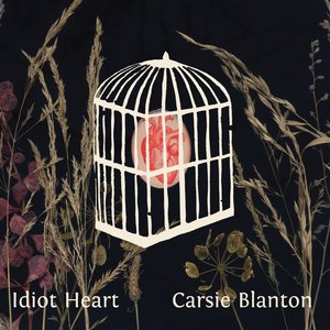 Image for 'Idiot Heart'