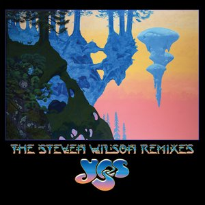 Image for 'The Steven Wilson Remixes'