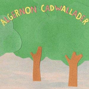 Image for 'Some Kind of Cadwallader'