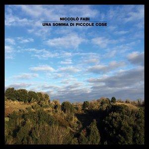 Image for 'Una Somma Di Piccole Cose'