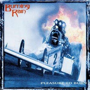 'Pleasure To Burn'の画像