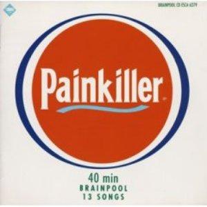 Bild för 'Painkiller'