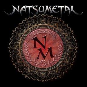 Image for 'NATSUMETAL'