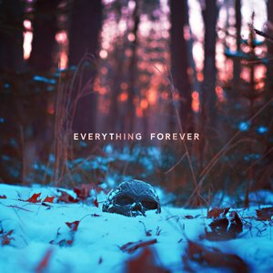 Image for 'Everything Forever'
