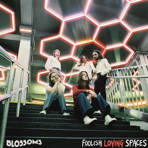Image for 'Foolish Loving Spaces'