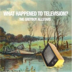 Image for 'What Happened To Television?'