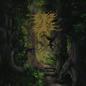 Image for 'The Green Enchanted Forest of the Druid Wizard'