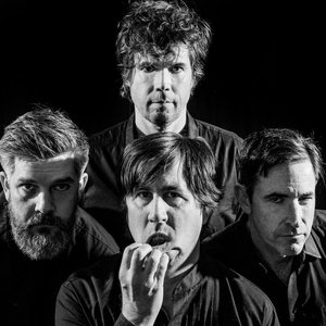 Image for 'The Mountain Goats'