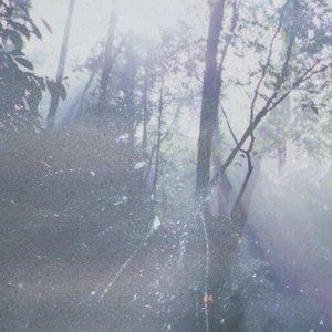 Image for 'ephemerals'