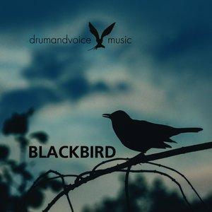 Bild für 'BlackBird - Single'