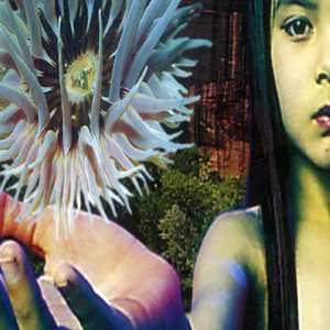 Image for 'Lifeforms'