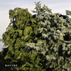 Image for 'Bayybe'