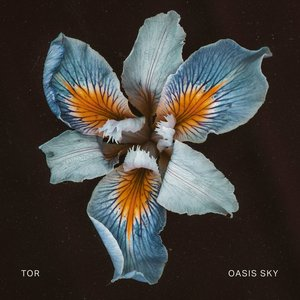 Image for 'Oasis Sky'