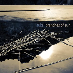 Image for 'Branches Of Sun'