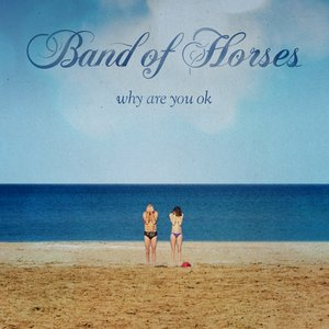 Image pour 'Why Are You OK'
