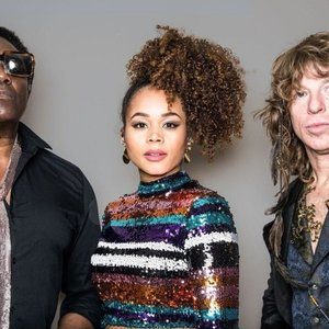 Image for 'The Brand New Heavies'