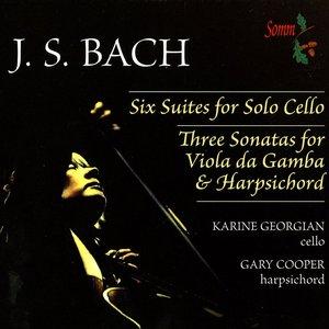 Image for 'Bach: Cello Suites Nos. 1-6 & Viola da Gamba Sonatas (Arr. for Cello & Harpsichord)'
