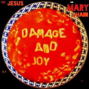 Image pour 'Damage and Joy'