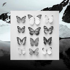Image for 'Young Alaska'