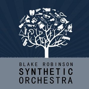 Image for 'The Blake Robinson Synthetic Orchestra'