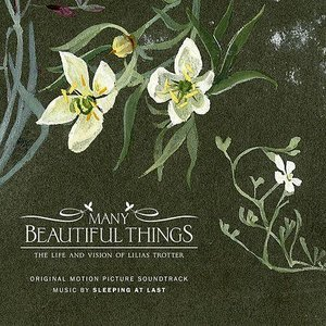 Bild für 'Many Beautiful Things (Original Motion Picture Soundtrack)'