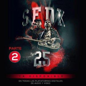 Imagen de 'Concierto 25 Aniversario (Pt. 2)'