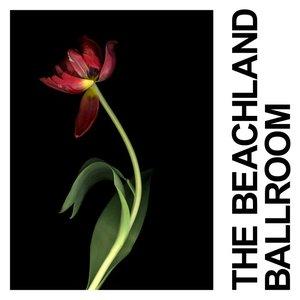 Image for 'The Beachland Ballroom'