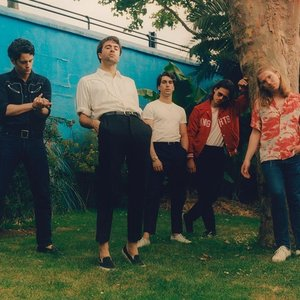 Image for 'The Vaccines'