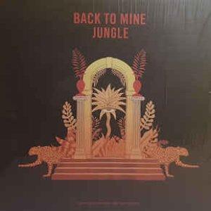 Image for 'Back to Mine: Jungle (DJ Mix)'